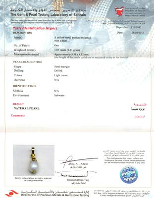 Certificate - Natural Basra Persian Gulf Pearl Pearl