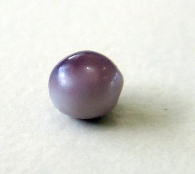 Natural Blue Mussel Pearl 2 Toned Dark Amp Light Purple