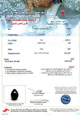 Certificate - Natural Brown Persian Gulf Pearl Pendant 2+ carat