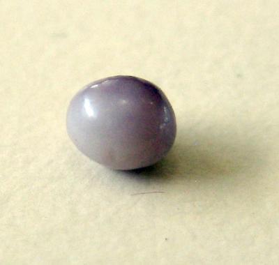 Lavender Natural Pearl