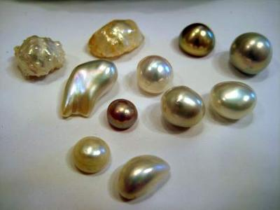Natural Mississippi River Pearls