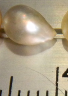 Natural Pearl from Mozambique