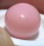 Natural Pink Conch Pearl 11 carats