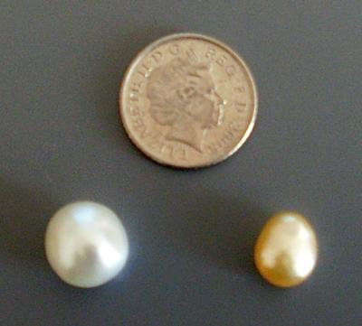 Nncultivated South Sea Pearls