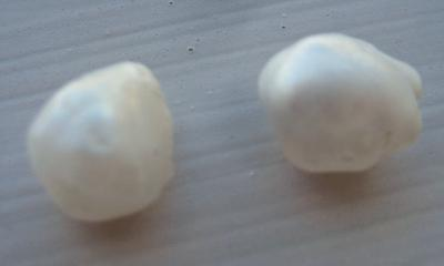 Natural USA Freshwater Pearls - Pair