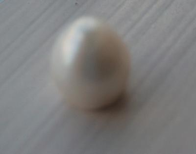 USA Natural Pearl Dome Shaped