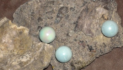 Fossilized Pearls from Wyoming