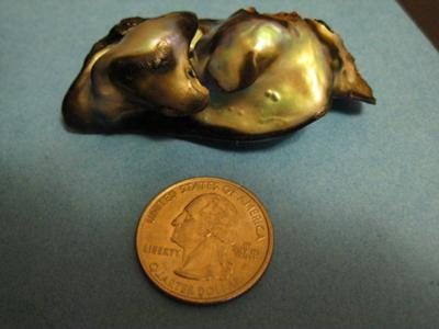 North California Abalone Pearl