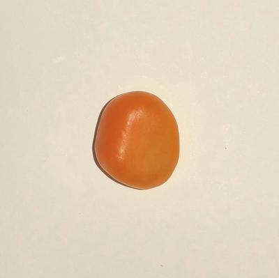Orange Clam Pearl 5.25 ct for Sale