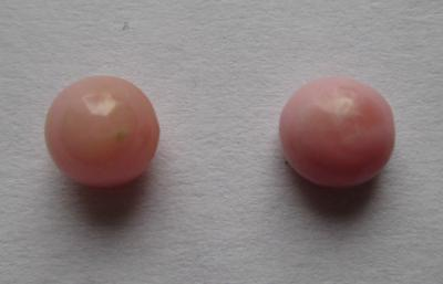 Pair Light Pink Conch Pearls