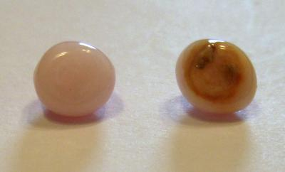 Pair Conch Pearls - 4.51 carats
