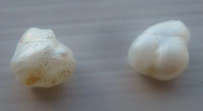Pair of Natural USA Freshwater Pearls