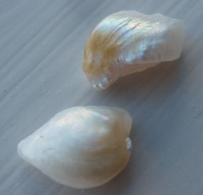 Pair of Natural USA Freshwater Pearls