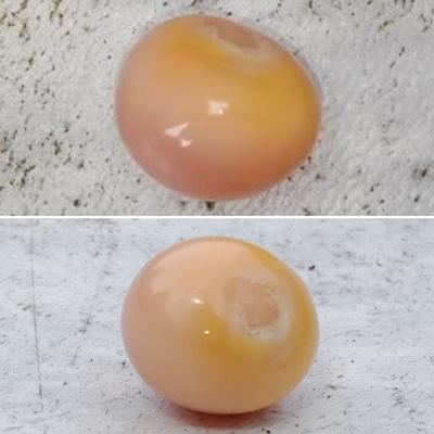 Pink Conch Pearl ~ 8 ct