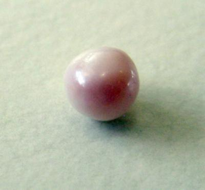 pink and white blue mussel pearl