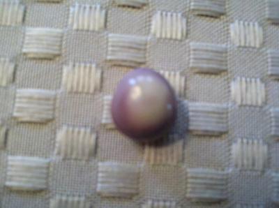 Purple & White Quahog Pearl