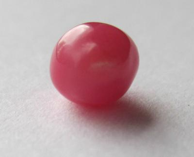 1.57carat conch pearl