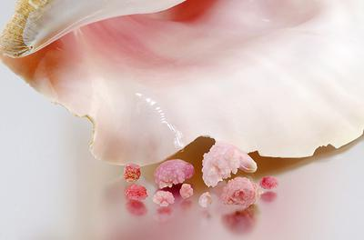 """Figure 1. """"Rosebud"""" conch pearls of various pink tones ranging from 0.93 to 14.72 ct. Photo by Sood Oil (Judy) Chia."""