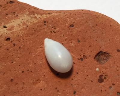 Saltwater Drop Pearl with Flame 1.85 carats