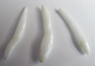 Set of 3 Long Drop Clam Pearls for Sale