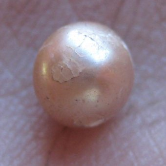 Pearl from the Kimberly is 2,000 years old