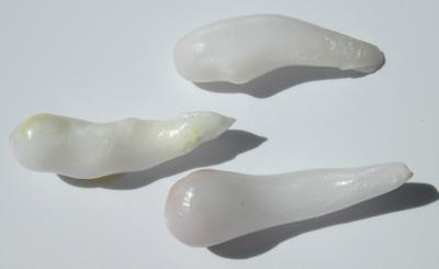 Three Drop Clam Pearls 25 carats total for Sale