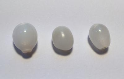 Three Oval Clam Pearls