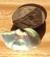 Abalone Pearl 45 carats (beside 50 cent piece) for Sale