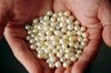 Cultured Pearls from UAE
