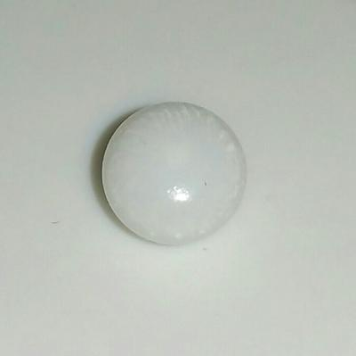 Tiny Clam Pearl 1.2 ct