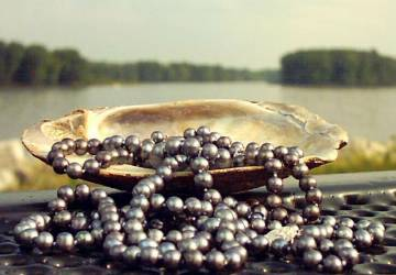 Tumbling Black Pearls on Mississippi River