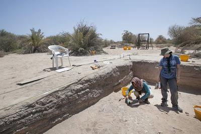 Dalma Island Excavation