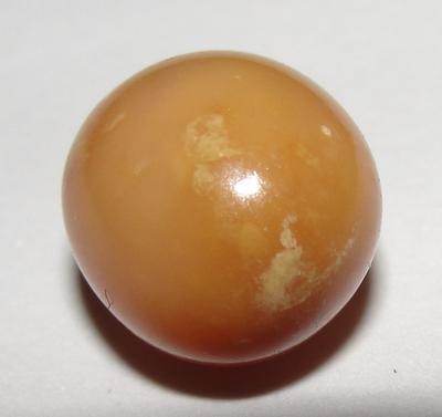 Very Rare  Brown Conch Pearl