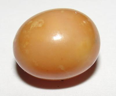 Very Rare  Brown Conch Pearl