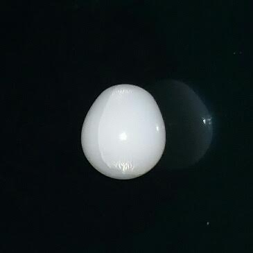 11.3ct clam pearl with flame