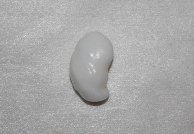 20.3 ct Clam Pearl
