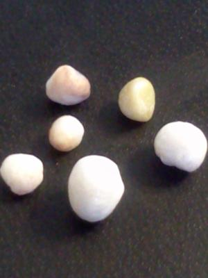 6 (pearls?) found in Oyster at Red Lobster