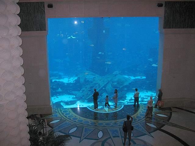 Aquarium Atlantis the Palm Hotel Dubai