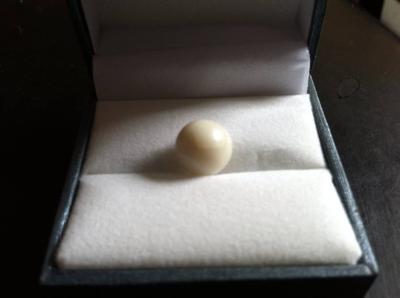 Authentic & Amazing White Quahog Pearl