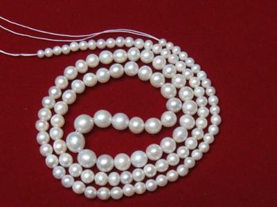 Natural Pearl Necklace 48.55 carats