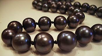 Black Freshwater Pearls