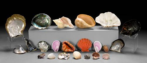 Collection of Rare Pearls