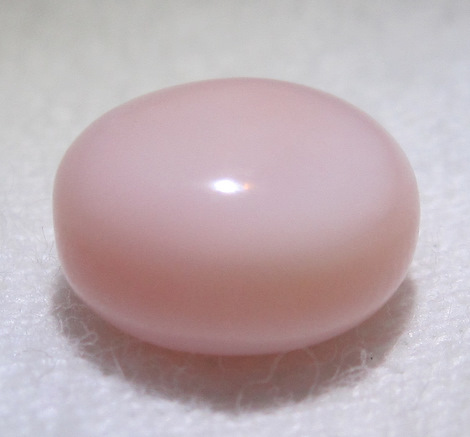 Conch pearl 3 carats