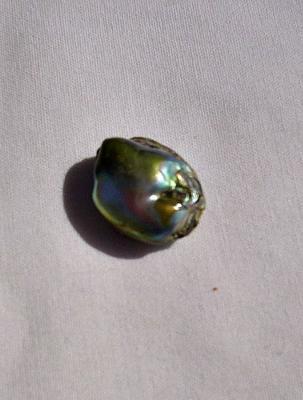roundish abalone pearl