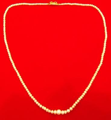 Natural Pearl Necklace at 33 Carats