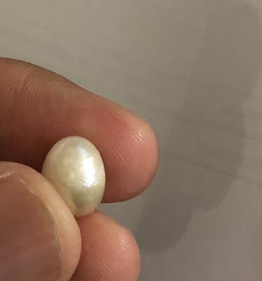 Natural Salt Water Pearl 6+ cts
