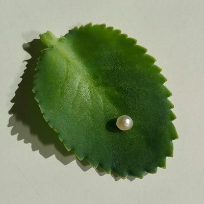 Natural Saltwater Pearl 0.82 ct