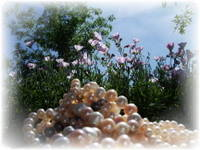 pink and white pearls with cosmos