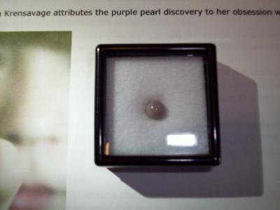 Purple Cherrystone Clam Pearl