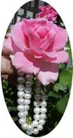 rose pearls oval